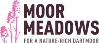 Moor Meadows logo