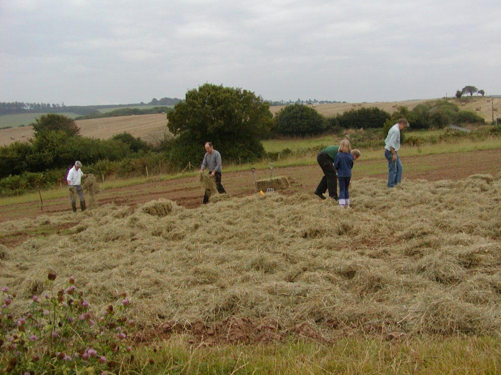 Species rich hay bales being strewed on Bridford Trust's community meadow